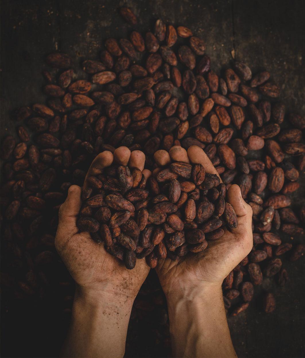 Rohstoff Kakao